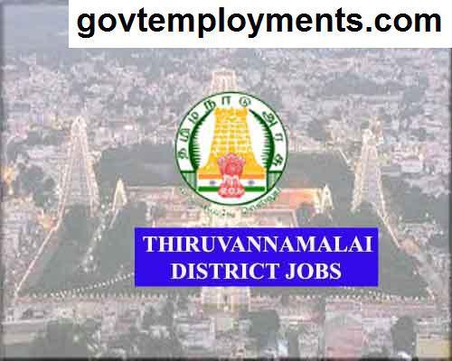Thiruvannamalai District Jobs 2020, 509 Cook Assistant & Other Vacancies, Apply @ tiruvannamalai.nic.in